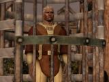 The Qunari Prisoner