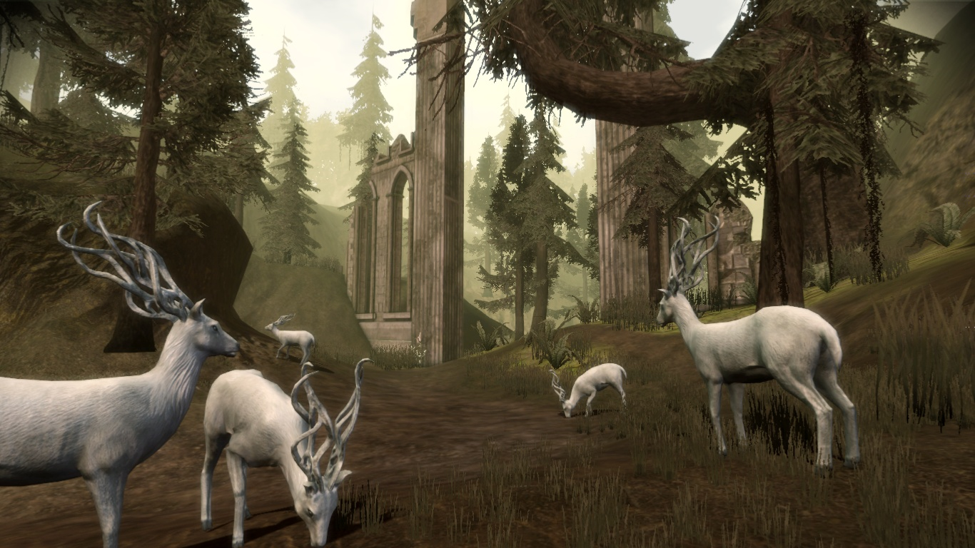 East Brecilian Forest