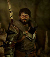 Hawke inquisition