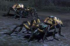 Creature-Giant Spiderling