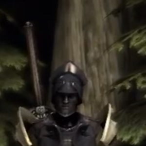 Dragon Age II Chevalier.png
