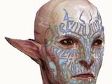 Codex entry: Vallaslin: Blood Writing