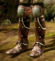 Ботинки Дейгана