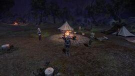 Campamento del grupo.jpg