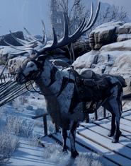 Greater Frostback Elk