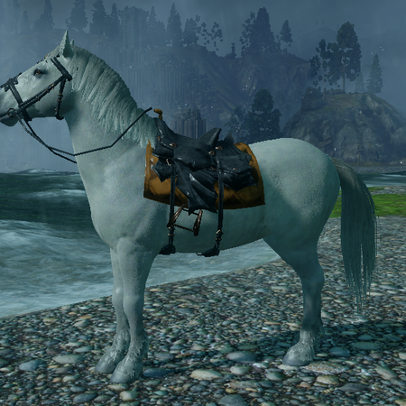 Imperial Warmblood.png