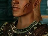 Kodeks: Zevran Arainai (Dragon Age II)