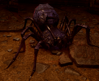 Corrupted Spider DAI