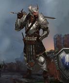 Heroes of Dragon Age Блэкволл