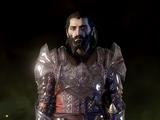Heavy Warden Armor