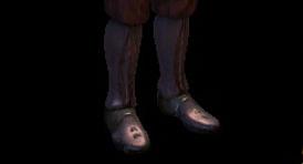 Ботинки стража Орзаммара