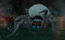 Тронутый Тенью паук
