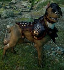 Hessarian hound mabari