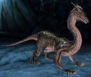 Dragonling (Origins)