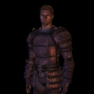 Wade S Dragonskin Armor Set Dragon Age Wiki Fandom Safeguard armor® has a proven track record of selling high quality bullet proof vests to local companies, and we use our experience in the industry to provide the most complete protection possible for our customers. dragonskin armor set dragon age wiki