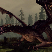 Flemeth High Dragon form in Origins Image.png