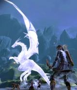 Frozen high dragon