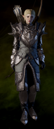 Crafted Dragon Hunter Armor
