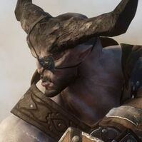 Ironbull profile