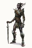 Inquisition Arlathan Elves concept 3