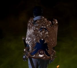 Орлесианский щит со львом.png