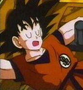 Goku6