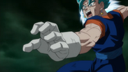 Vegetto Blue Punch 3