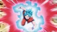 Goku SSJ Blue Kaioken x20