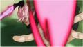 GokuBlackKi
