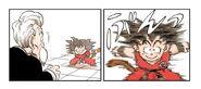 Goku uses the same technique...