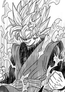 Goku Black SS Rosa Manga Toyotaro