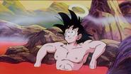 Goku Hot Spring
