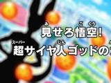 Libere-o, Goku! O Poder do Super Saiyajin Deus!