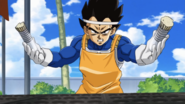 Vegeta cooking