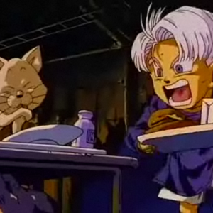 Cat&Trunks.png