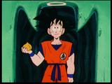 Dragon Ball Z épisode 013