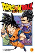 DBS Volume 12 English Cover