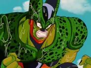 Cell arrabbiato
