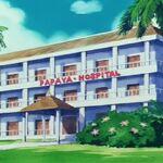 Papaya Hospital 1.JPG