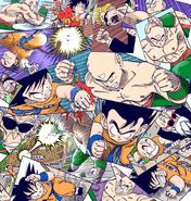 Tenshinhan vs. Son Goku a Full Color