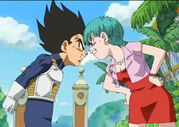 Vegeta and Bulma arguing