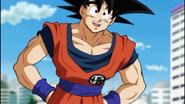 DBS Goku-san