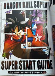 Dragon-Ball-Super-Start-Guide-3-349x482.jpg