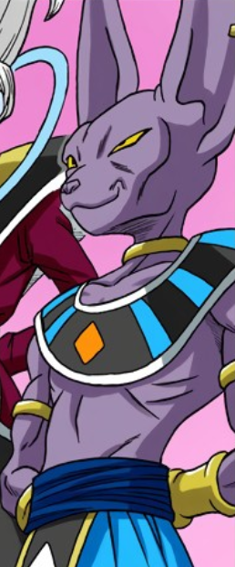 Beerus Dragon Ball Wiki Fandom