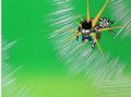Frieza attacks gohan 5.5