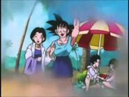 Goku and Chichi and the beach