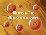 Goku's Ascension