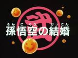 Episodio 137 (Dragon Ball)