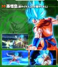 Goku (SSGSS) XV2 Character Scan