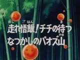 Episodio 16 (Dragon Ball Z)